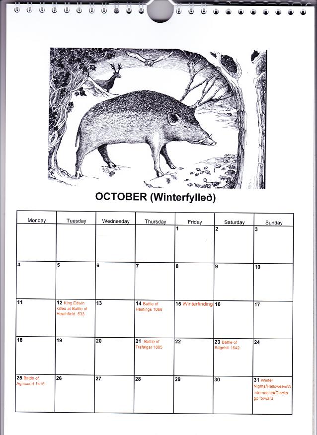 Wild boar eating acorns in autumn.