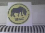 THIS IS OUR YELLOW CAR STICKER WITH A BLUE PONY