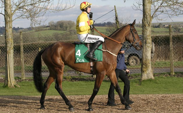 Horse Racing At Wincanton