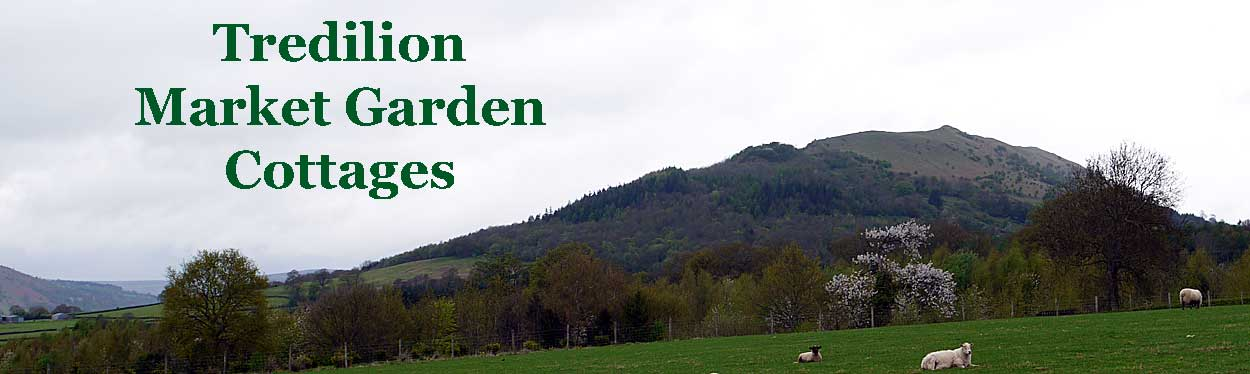 Tredilion Gwent Holiday Cottages