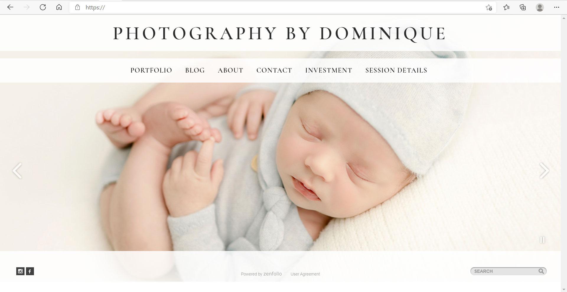 Zenfolio Example Website 03