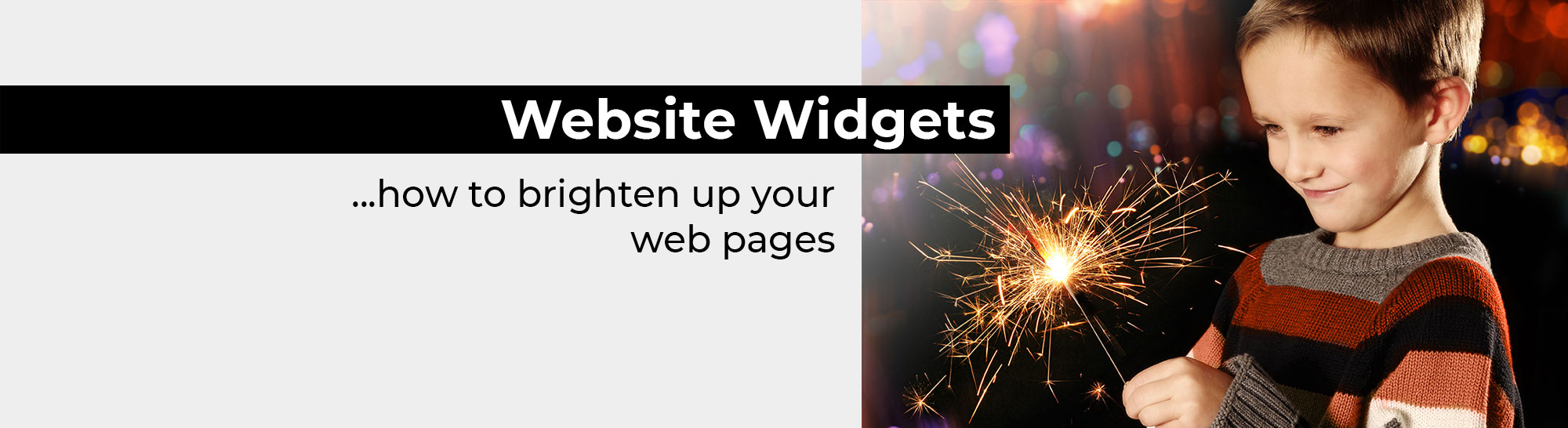 Website Widgets